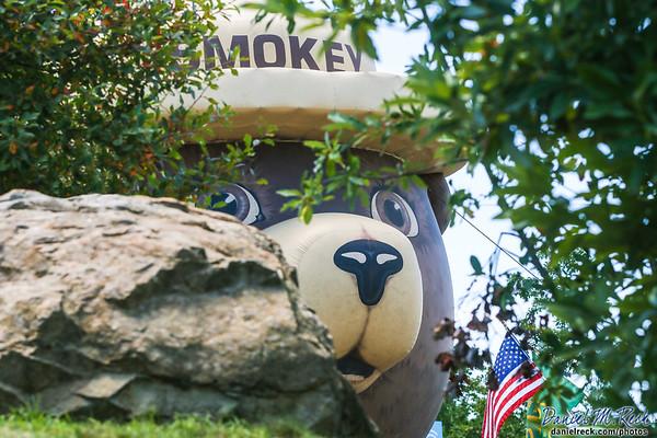 Smokey is Watching the Woods