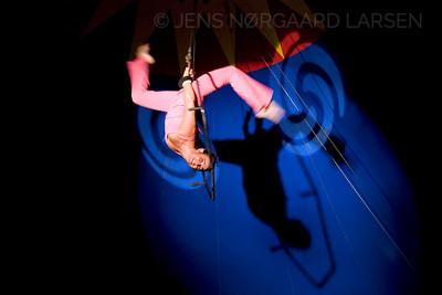 Cirkus Arli