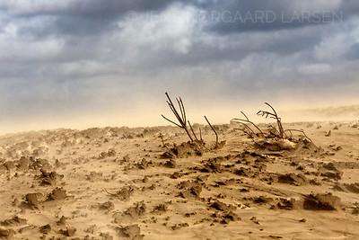 Sandflugt