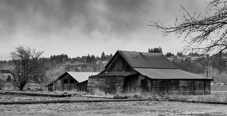 Puyallup Valley Barn