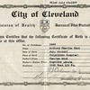 1937-Tony-Rini-Birth-Cert-004