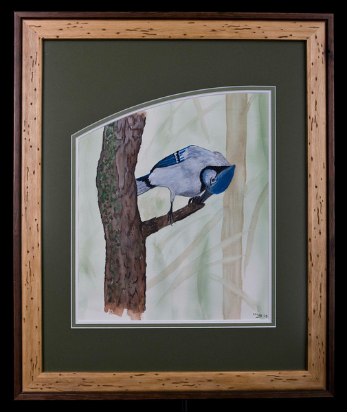 LOOKING FOR THE BUG. Original Watercolor by Dan Pesznecker.  19 x 23 PRICE WITH FRAME AND MATT 325.00 DOLLARS.