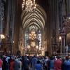 St. Stephens in Vienna