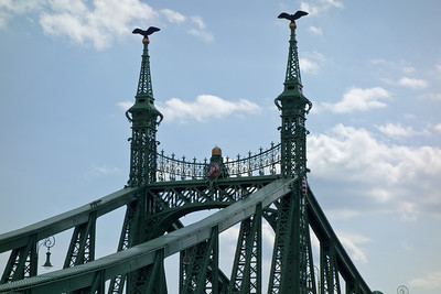 The top of the Liberty bridge with Hungarian icons.