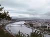 Bridges, Danube River, Budapest, Hungary (Bronica 645)