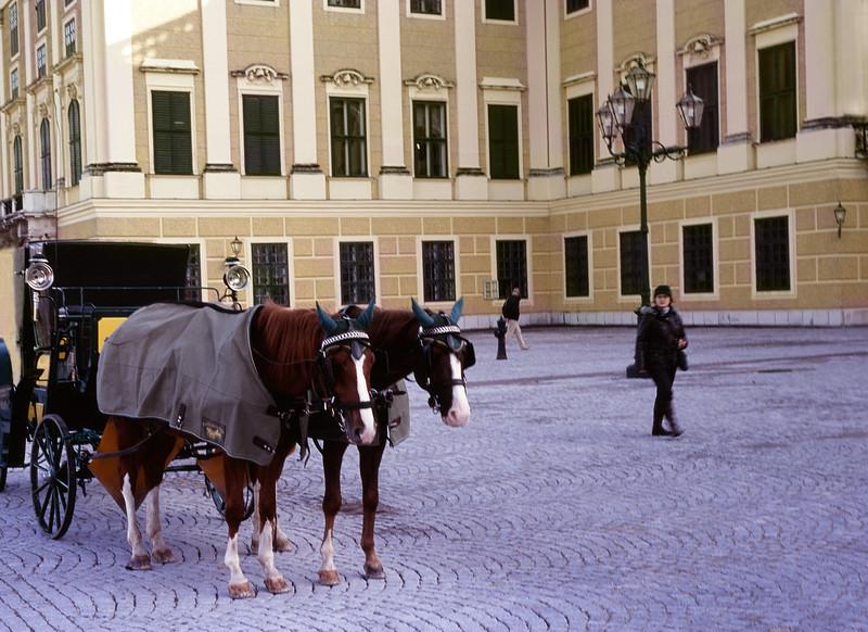 Horse Carriage, Schonbrunn Palace, Vienna, Austria