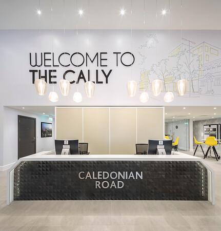 Caledonian MS 004