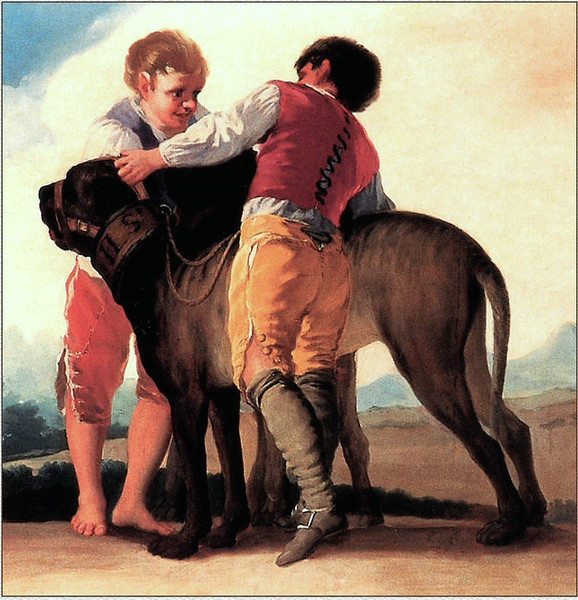 A boy Darcy playing with a Pemberley mastiff.