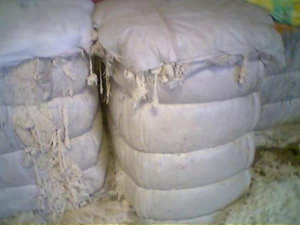 raw cotton bales, very flammable