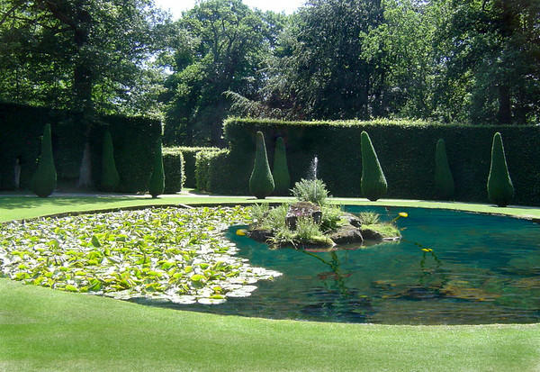 Lily Pond & fountain