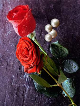another rose & pearls