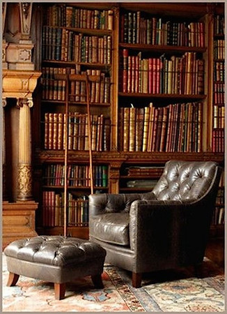 leather chair in library