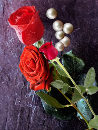 third gift of rose and pearls