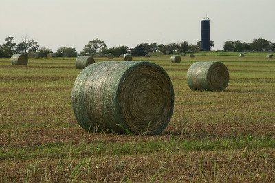 Straw bales in northern Cloud County