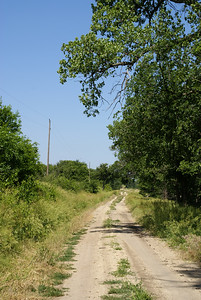 """Rediscovering Sod-House Days"" tour. Road near site of Howard Ruede homestead."