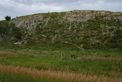 Exposed limestone layers on bluff along Canyon Drive northwest of Russell