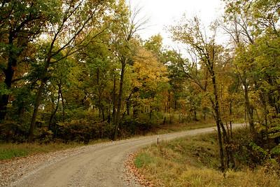 Fall foliage along drive at Atchison County Lake