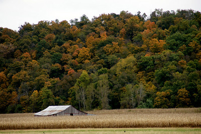 Barn and fall foliage in Missouri River floodplain