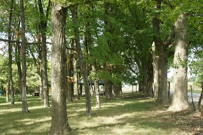 Site of Black Jack battlefield in 1856 near Baldwin City.
