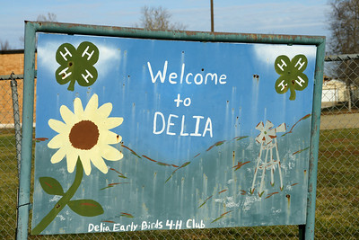 Delia welcome sign