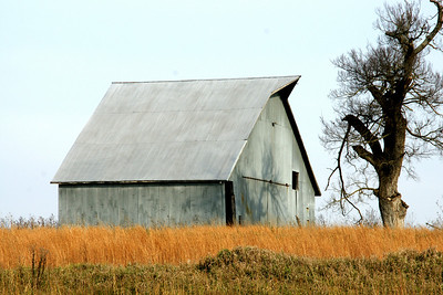 Barn and tree - western Johnson County