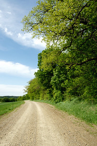 View along Hall Drive - western Leavenworth County