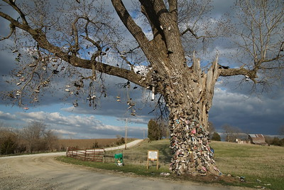 The Shoe Tree north of Wetmore