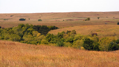 Flint Hills seen from Carnahan Road