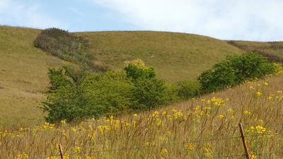 Flint hills seen from Spring Creek Road in northwest Pottawatomie County