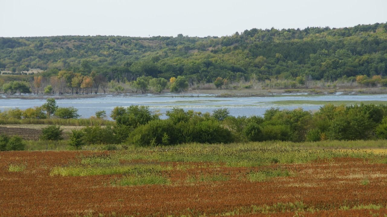 Wetlands area on north end of Tuttle Creek Reservoir seen from Shannon Creek Rd in northwest Pottawatomie County