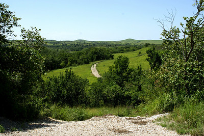 Konza Prairie nature trail. Looking back down trail.