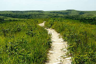 Konza Prairie nature trail. Approaching highest point.