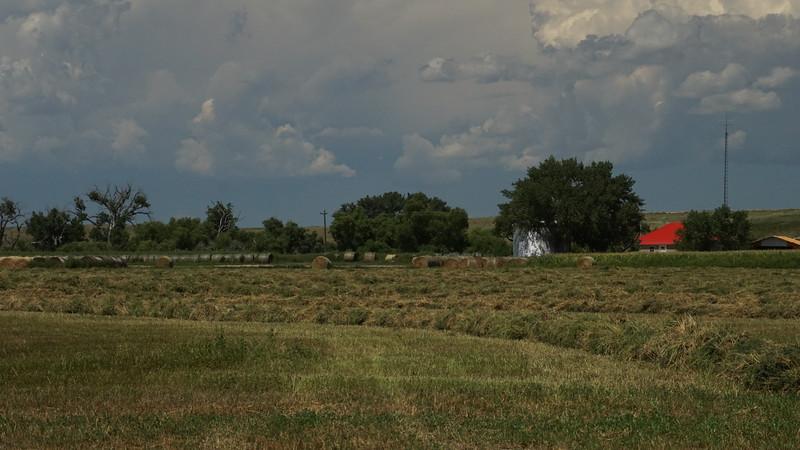 Alfalfa and Clouds