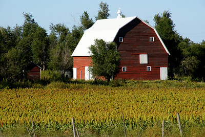 Red barn - southern Graham County