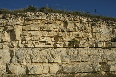 Exposed limestone face in southeast Rooks County