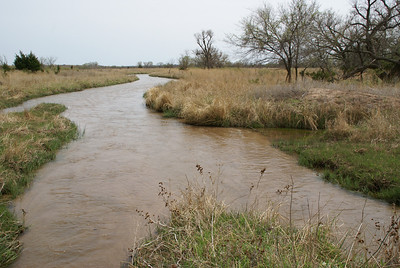 Mule Creek - western Barber County