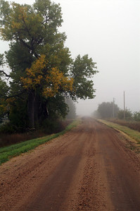 Foggy drive on rural road - Barton County