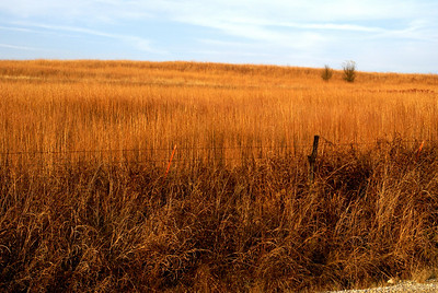 Fall color on prairie hillside - eastern Cowley County