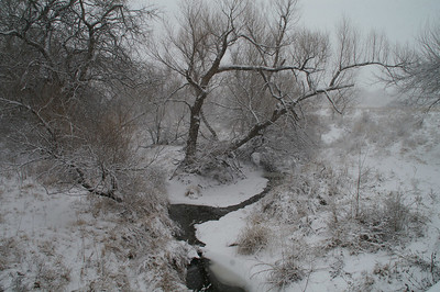 Winter snow along Jester Creek - Harvey County