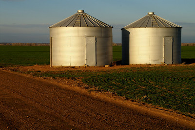 Grain bins along SW160th Ave