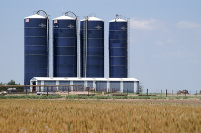 Group of Harvestore bins - western Pratt County