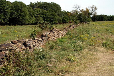 Remnants of stone fence between Cedar Vale and Hewins