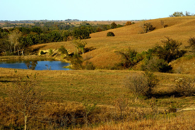 Pond in the hills - northern Greenwood County