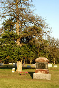 No 8 Cemetery east of Madison - northeast Greenwood County