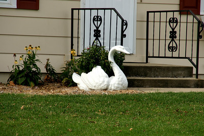 Swan statue in LaCygne, The City of Swans