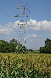 Electric transmission lines in eastern Wilson County