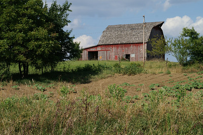 Red barn - eastern Wilson County