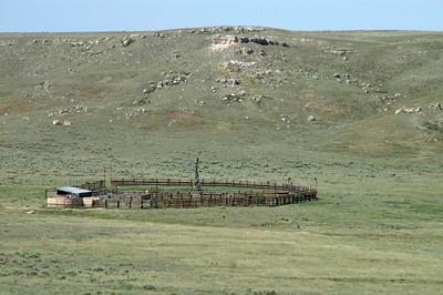 Buffalo pens in Big Basin