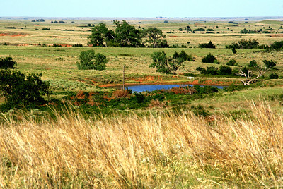 Pond in Red Hills - eastern Comanche County