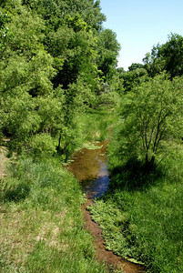 Calvary Creek west of Coldwater